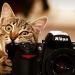 I_AM_Nikon