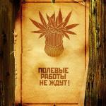 Kirillz9123