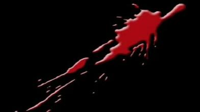 Blood Omen 2 Movie