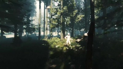 "The Forest ""PlayStation Experience: анонс трейлер для PS4"""