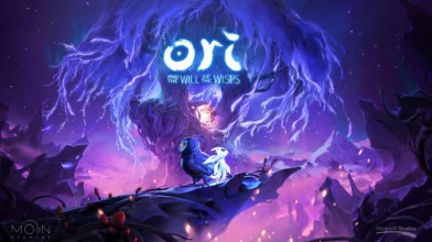 Некоторые детали Ori and the Will of the Wisps