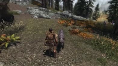 The Elder Scrolls 5: Skyrim Охотник. Гайд (Ordinator)