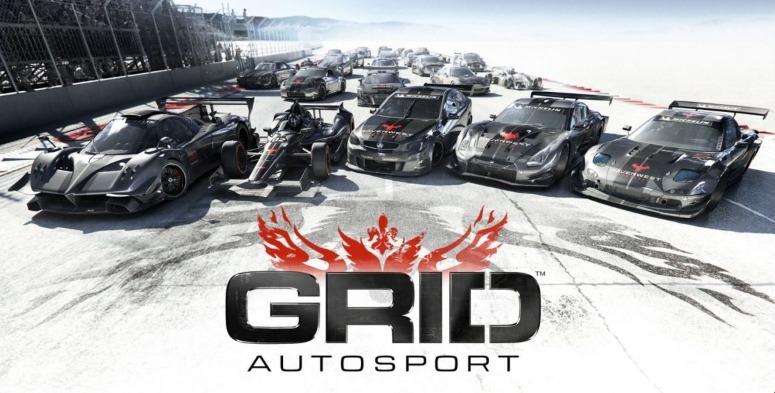 Управление в GRID Autosport для Nintendo Switch