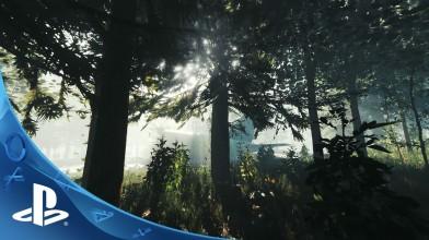 Survival-хоррор The Forest перенесли на PS4