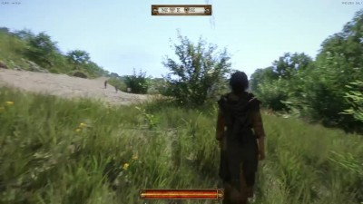 УГОЛОВНИК?! Kingdom Come: Deliverance Alpha Эп.2