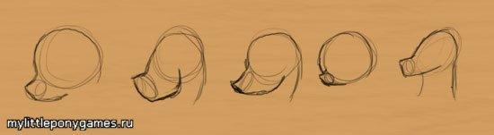 Стиль головы для поней