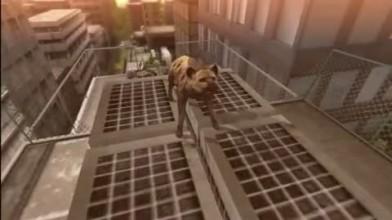"""Tokyo Jungle """"GamesCom 2012 Trailer"""""""