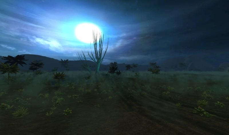 foggy_swamp