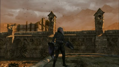 dark souls гигантский ворон