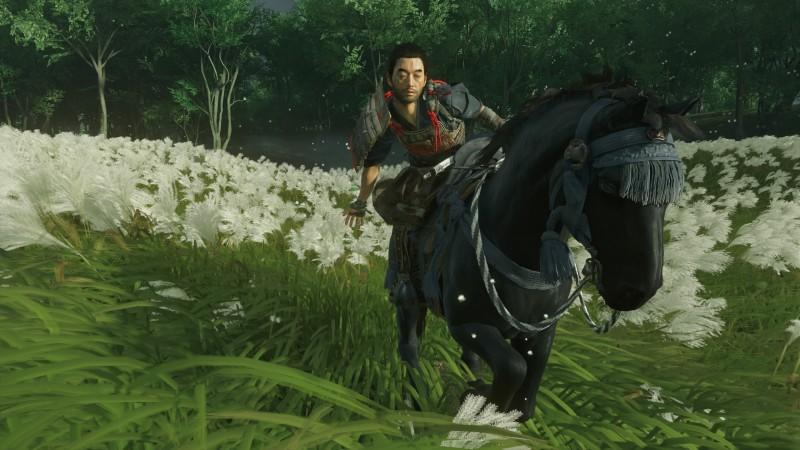Никакой разницы между чистокровной лошадью и старой облезлой клячей в игре нет