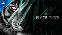 Анализ лучшей игры для PS4 - Life of Black Tiger