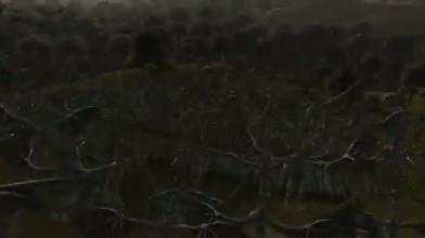 """King Arthur 2 """"Dead Legion Trailer"""""""