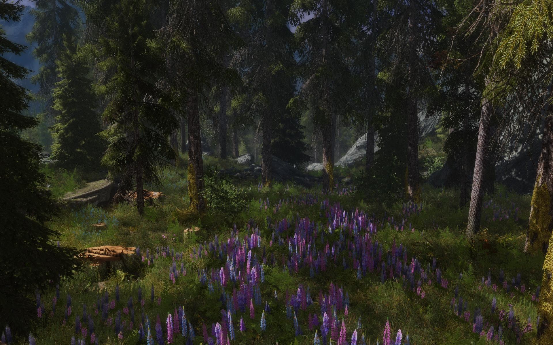 Скачать мод на скайрим skyrim flora overhaul
