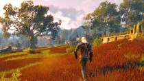 ����� The Witcher 3 Wild Hunt