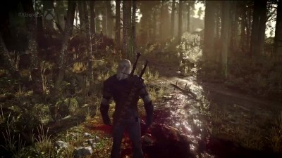 "The Witcher 3 Wild Hunt ""XBOX E3 2014 - E3 Показ геймплея"""