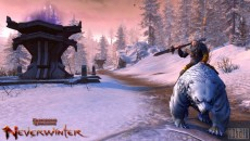 Neverwinter Online - Долина Ледяного ветра: Развитие после 60