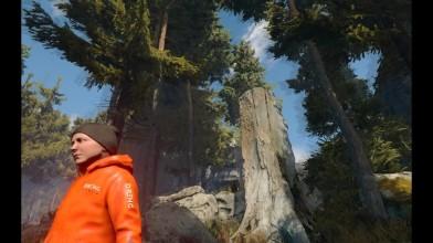Обзор игры Through the Woods (2016)