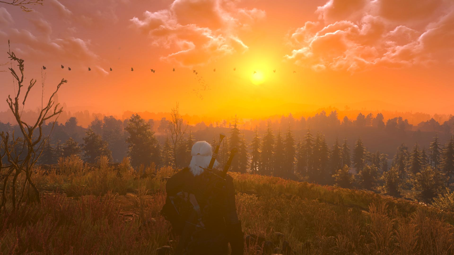 Разработчик подтвердил, что в скором времени появится новое обновление The Witcher 3 Nintendo