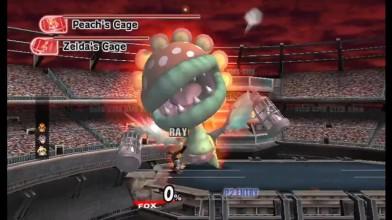 """Super Smash Bros. Brawl """"Поединок с цветком"""""""