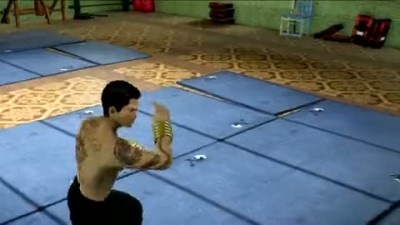 "Sleeping Dogs ""Martial Arts Pack """