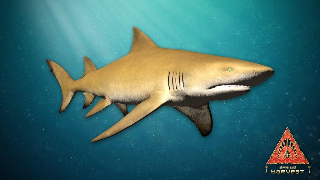 новый картинки лимонная акула был жив-здоров, находился