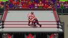 RetroMania Wrestling выйдет на NIntendo Switch