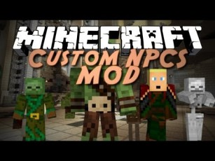 мод The Custom NPCs