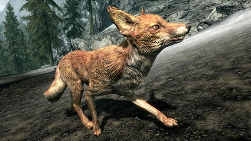 """Разработчик Skyrim рассказал о правдивости мифа """"лисы с сокровищами"""""""