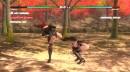 Бой Момиджи и Рэйчел из Dead or Alive 5 Last Round, управляемых автокликером.