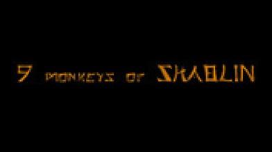 Разработчики Redeemer анонсировали боевик 9 Monkeys of Shaolin