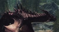 Skyrim - Сборник новых драконов