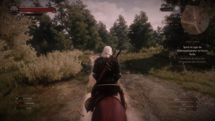 Beat the Wild Hunt - New Pictures Version 1.0