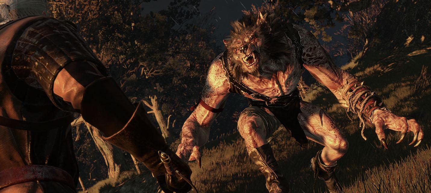 Как выглядят PUBG, GTA V, The Witcher 3 и TESV: Skyrim с инжектором