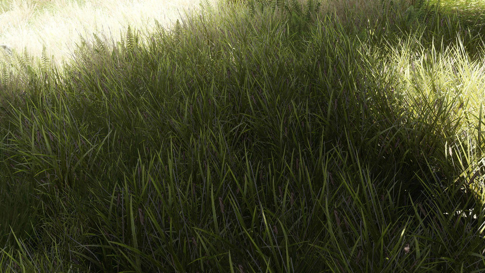Эпичная природа Skyrim