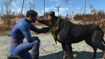 Новая модификация для Fallout 4 позволяет гладить любую собаку Пустоши