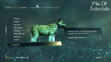 Пасхалки в Assassin's Creed IV- Black Flag [Easter Eggs]