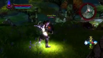 "Kingdoms of Amalur: Reckoning ""Spell Assassin Gameplay"""