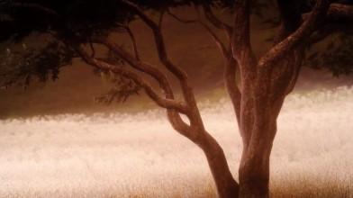 Final Fantasy 15 Episode Ardyn - Сопротивление судьбе (концовка)
