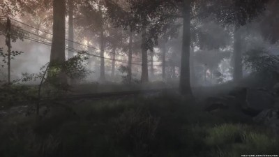 "the Vanishing of Ethan Carter ""Первые 17 минут"""