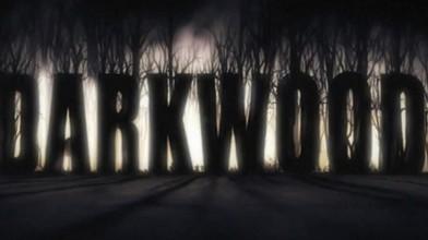 Вышло крупное обновление локализации Darkwood