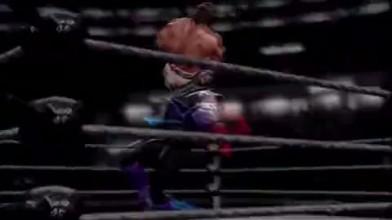 "WWE All Stars ""Путь чемпиона"""