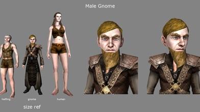 Гномы направляются в Dungeons & Dragons Online