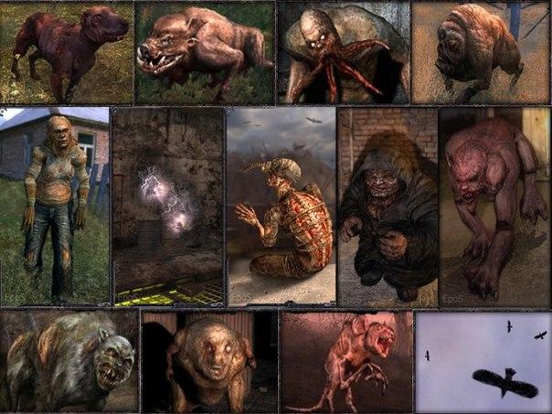 Картинки и названия монстров из сталкера