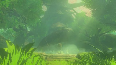 Особое издания The Legend of Zelda: Breath of the Wild