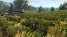 Геймплейный трейлер The Witcher 3: Wild Hunt отражает основные элементы механики