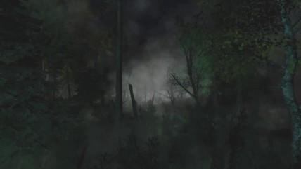 """S.T.A.L.K.E.R.: Call of Pripyat """"СВ3. Осколок Тьмы. Волшебный лес"""""""