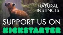 Natural Instincts вышла на Kickstarter