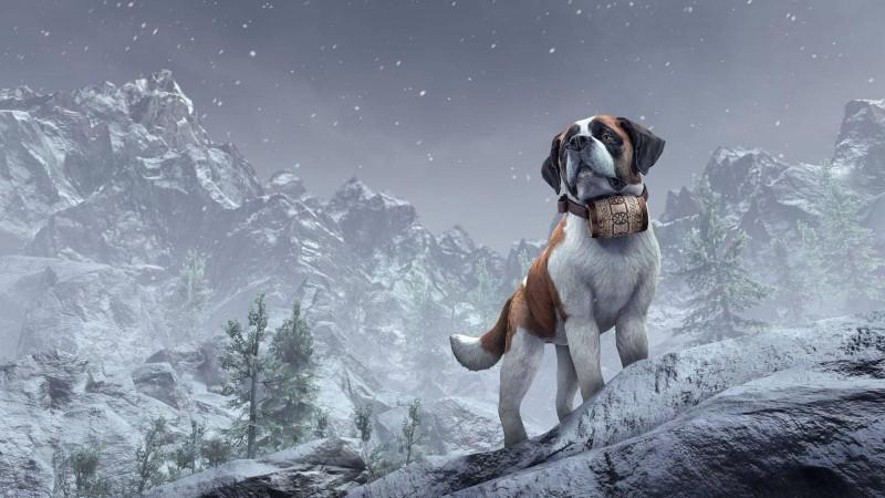 Эта верная собака последует за вами, куда бы вы ни пошли, даже в Белый проход и другие горные районы. Кому-то ведь нужно будет откапывать вас из-под снега и обломков камней, если вдруг сойдет лавина.