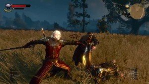 The Witcher3 Wild Hunt