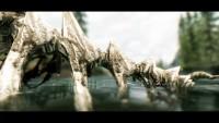 skyrim-hd-tekstury-dlya-ostankov-drakonov3